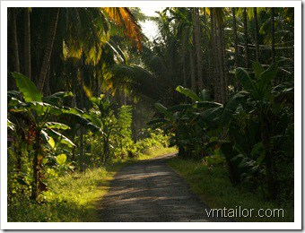 andaman by Vivek Tailor