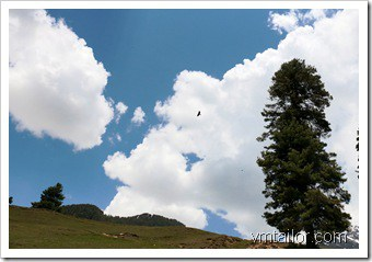 pahalgam by Vivek Tailor