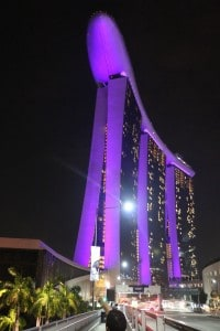 Marina Bay Sands by Vivek Tailor